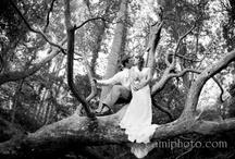 Wedding inspiration/favorites