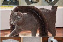 Pet | Dog + Cat Tips / Pet advice, animal DIY ideas, Cat and Dog tips and advice.