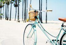•Beach•