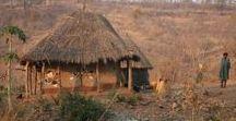 Africa - Zambia / Lusaka / Zambia, Republika Zambii (Republic of Zambia), dawniej Rodezja Północna-płd Afryka. Zambezi - gł. rzeka. Terytorium Zambii jest podzielone na 10 prowincji (w nawiasach stolice prowincji): Centralna (Kabwe); Pasa Miedzionośnego (Ndola);  Wschodnia (Chipata); Luapula (Mansa); Lusaka (Lusaka); Północna (Kasama); Północno-Zachodnia (Solwezi); Południowa (Livingstone); Zachodnia (Mongu); Muczinga (Chinsali);