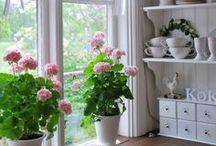 Wohnen- Einrichtung / Home sweet Home / Ideen für ein schönes Zuhause