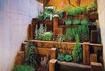 Garden/Yard Idea's