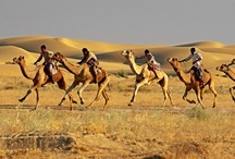 Rajasthan Tours India / We offer Rajasthan tour packages at reasonable rates. For a lot of info on Rajasthan tour or visit http://www.rajasthantours.net / by Abhishek Jain