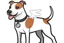 My Dog Max!