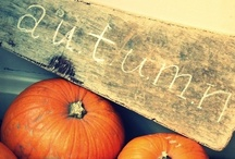 Autumn  / Fall, thanksgiving / by Emily Hollingsworth