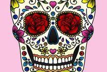 Skull / #skull #skulls