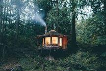 HUT IN WOOD / Cabanes dans les Bois