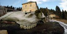 HIKING | Erzgebirge Tschechien / Klínovec - verwirrende Wegbeschreibungen, Umwege und wunderschöne Aussichten