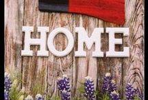 Gotta love Texas / by Pat Black-Georgens