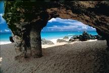 Bermuda: Blissful Beaches