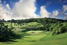 Bermuda: Gorgeous Golf Courses