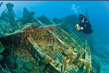 Bermuda: Shipwreck Sensations