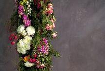 w e d d i n g.  f l o w e r s / wedding flowers