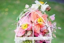 Pink Weddings Ideas! / Pink garden wedding inspiration! / by Karen Buckle Photography - Wedding & Portrait Photographer Noosa Beach & Destinations Worldwide