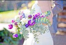 Lavender wedding ideas! / Lavender wedding inspiration! / by Karen Buckle Photography - Wedding & Portrait Photographer Noosa Beach & Destinations Worldwide
