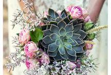Créations florales