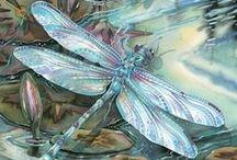 Animal Life: Flutterbys /   / by Vonnie Davis