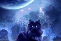 Art: Celestial: Moon Magic / by Vonnie Davis