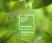 Greenery - Pantone's Color of the Year 2017 / Pantone has announced the 2017 Color of the Year and we just love it! A bright and cheerful color that gets us excited for spring.