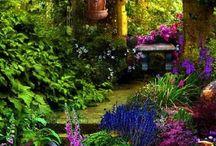 Gardens / by Leona Eunice Gentry