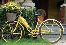 La Bicicletta / by Joni Peterson