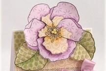 Cards-Floral / by Denette Stoll