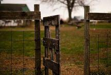 Farm / by Leona Eunice Gentry