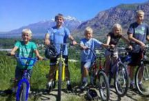 Family Life / by Deseret News