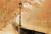 Autumn is Bliss / by Courtney Lozano Amchislavsky