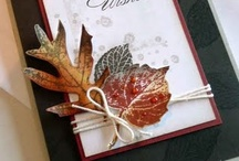 Cards-SU French Foliage / by Denette Stoll