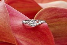 5 Star Wedding Jewellery / 5 Star Wedding Luxury Jewellery: http://www.5starweddingdirectory.com/business/wedding-jewellery/