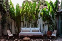 gardening / outdoor living / by Marissa Burns