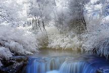 Winter Wonders / by A.E. Tyree