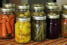 Recipes- Canning / by Cynthia Pennock