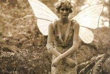 Faeries and Wings