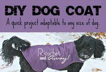 Zoey Puppy / by Kathy Jason