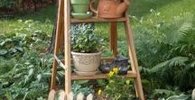 Ladders in the Garden / Tons of creative ways to use ladders in the garden.