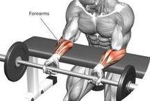 Training / Workouts&Exercises