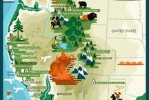 Maps / A collection of illustrated maps.