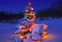 Christmas {celebration} / My favourite celebration of the year!
