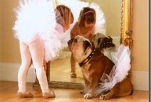 Perfect Shot: Animals / by Kinzie Craig