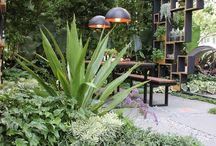 Urban jungle garden galore