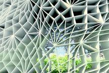 architecture: architecture biomimicry