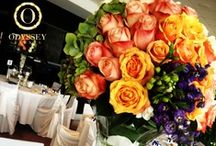 real weddings & events gallery, by Odyssey Events / A collection of real wedding and events, designed and produced by Odyssey Events.