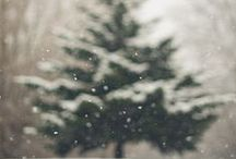 Yule / Winter Solstice December 20-23.