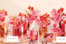 events | pink & purple