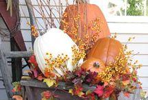 Fall & Halloween ideas / by Roxanne Lloyd