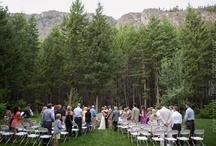 forest & barn weddings / by Sol Gutierrez
