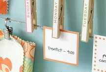 Organization / by Lucy Roberts Real Estate