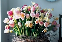 Spring Fever / Spring and Easter recipes, flower arrangements and centerpieces, home decor, DIY project and craft ideas, nature photos...  Everything to inspire you for the Spring and Easter season.